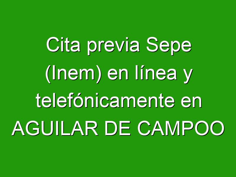Cita previa Sepe (Inem) en línea y telefónicamente en AGUILAR DE CAMPOO