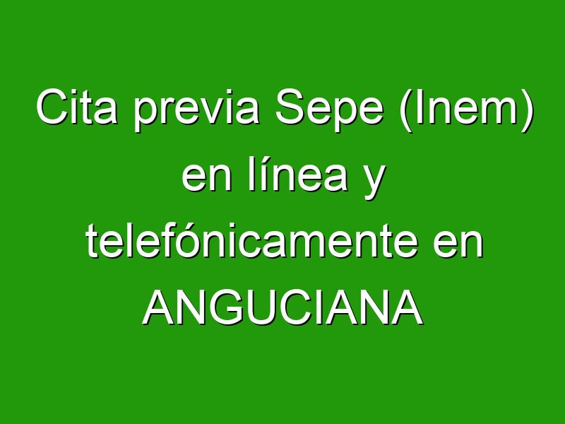 Cita previa Sepe (Inem) en línea y telefónicamente en ANGUCIANA
