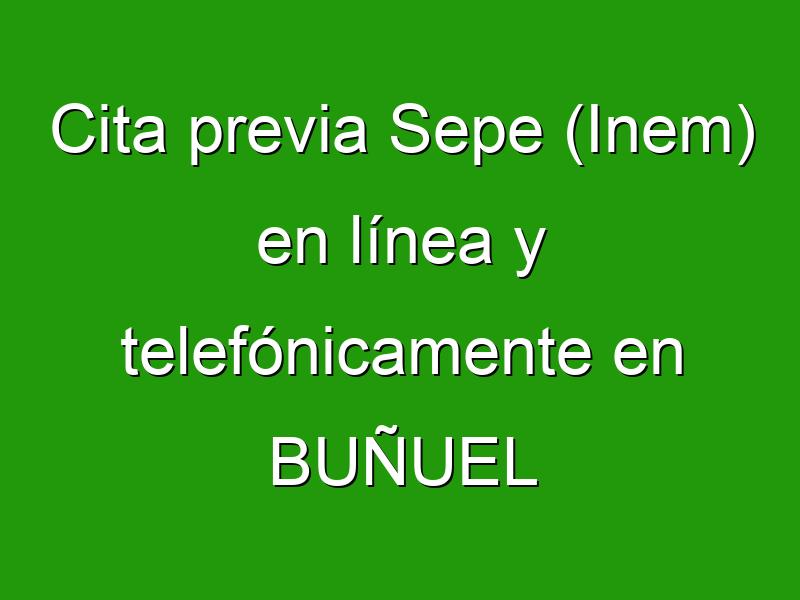 Cita previa Sepe (Inem) en línea y telefónicamente en BUÑUEL