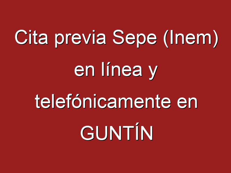 Cita previa Sepe (Inem) en línea y telefónicamente en GUNTÍN