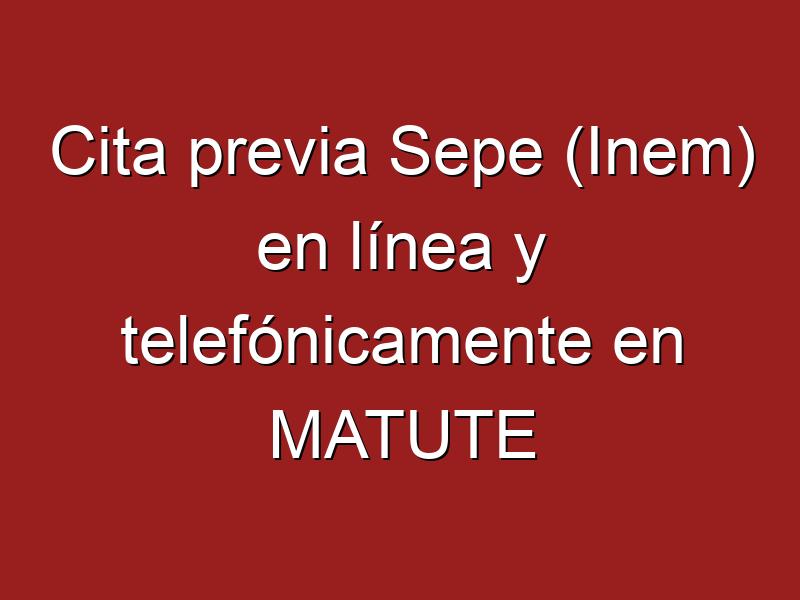 Cita previa Sepe (Inem) en línea y telefónicamente en MATUTE