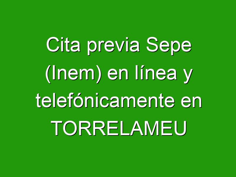 Cita previa Sepe (Inem) en línea y telefónicamente en TORRELAMEU