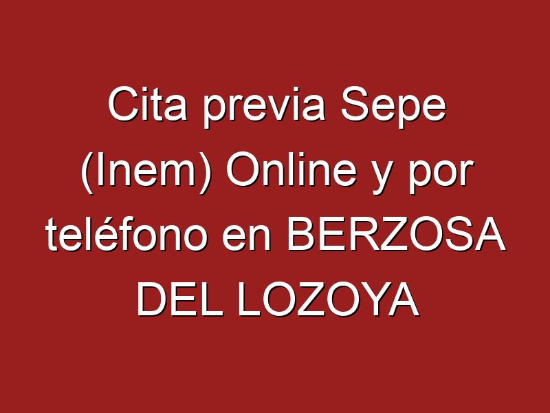 Cita previa Sepe (Inem) Online y por teléfono en BERZOSA DEL LOZOYA