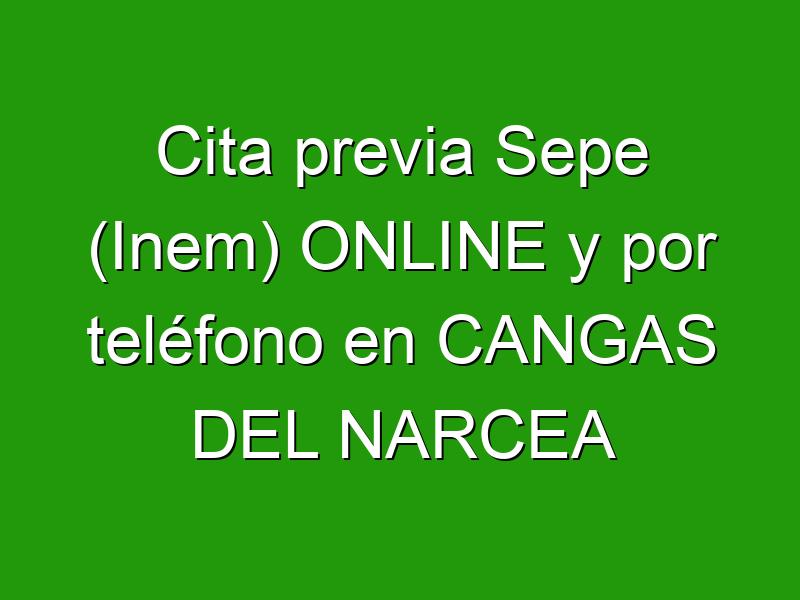 Cita previa Sepe (Inem) ONLINE y por teléfono en CANGAS DEL NARCEA