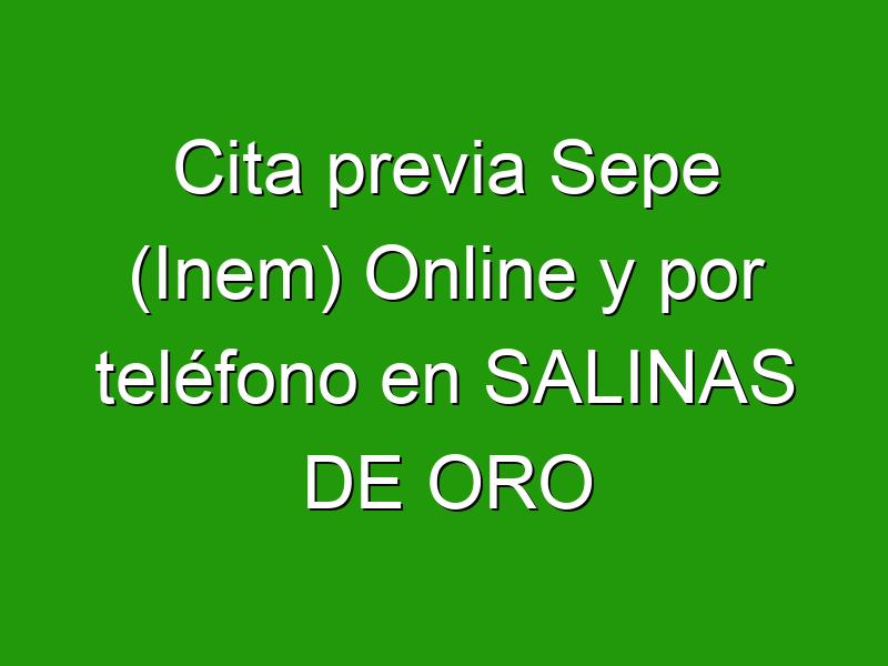 Cita previa Sepe (Inem) Online y por teléfono en SALINAS DE ORO