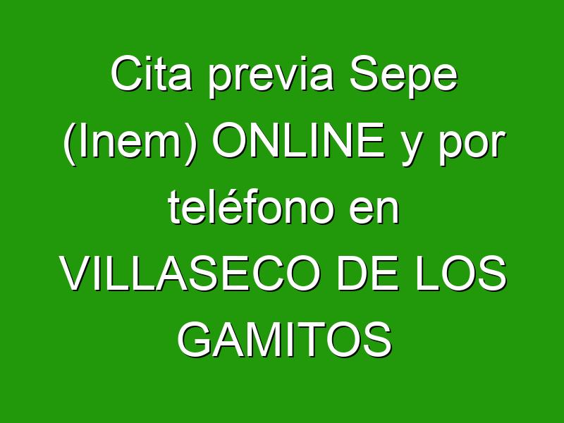 Cita previa Sepe (Inem) ONLINE y por teléfono en VILLASECO DE LOS GAMITOS