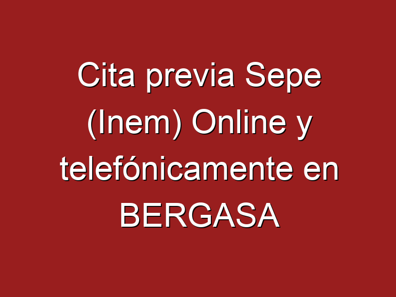 Cita previa Sepe (Inem) Online y telefónicamente en BERGASA