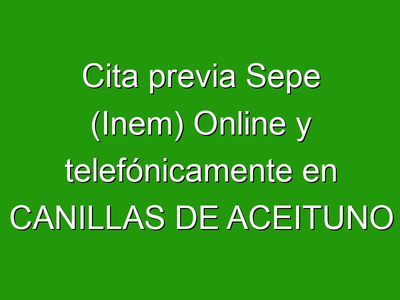 Cita previa Sepe (Inem) Online y telefónicamente en CANILLAS DE ACEITUNO