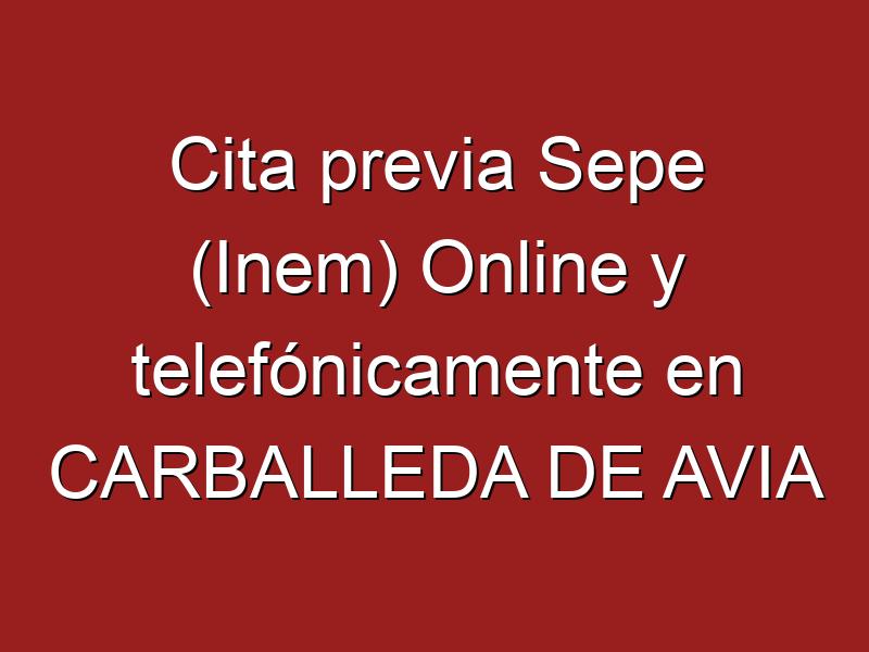 Cita previa Sepe (Inem) Online y telefónicamente en CARBALLEDA DE AVIA