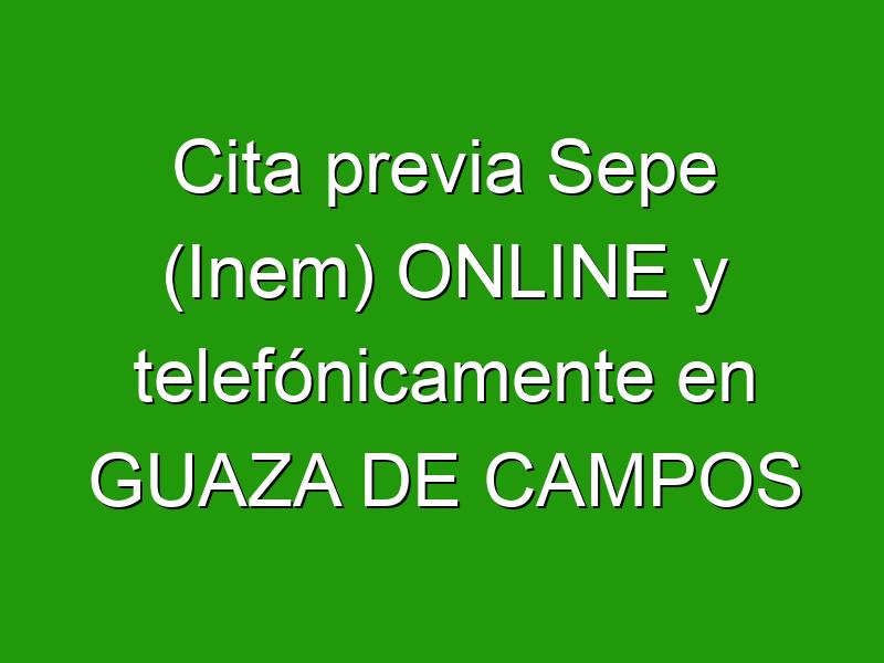 Cita previa Sepe (Inem) ONLINE y telefónicamente en GUAZA DE CAMPOS