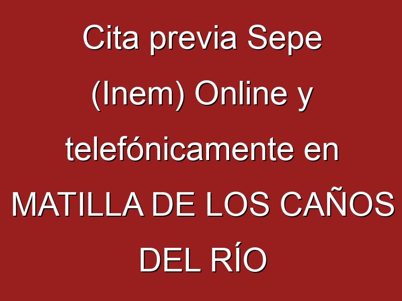Cita previa Sepe (Inem) Online y telefónicamente en MATILLA DE LOS CAÑOS DEL RÍO