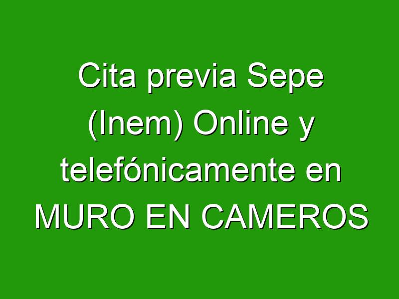Cita previa Sepe (Inem) Online y telefónicamente en MURO EN CAMEROS