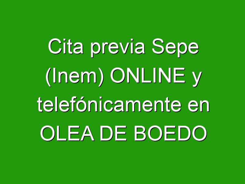 Cita previa Sepe (Inem) ONLINE y telefónicamente en OLEA DE BOEDO