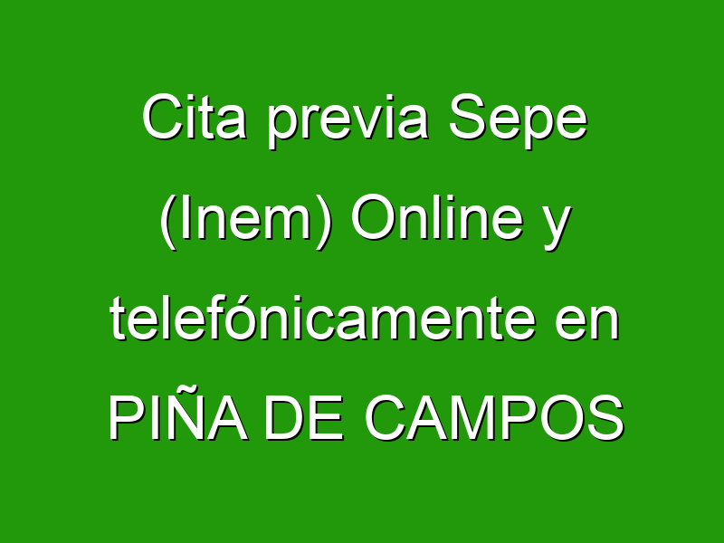 Cita previa Sepe (Inem) Online y telefónicamente en PIÑA DE CAMPOS