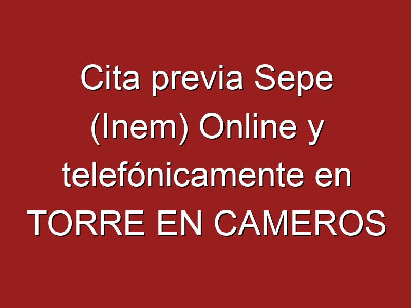 Cita previa Sepe (Inem) Online y telefónicamente en TORRE EN CAMEROS