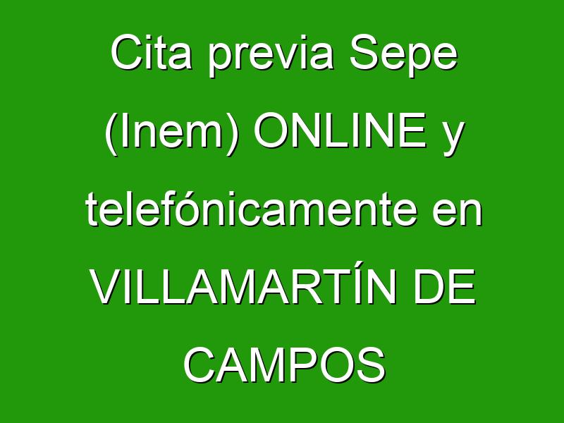 Cita previa Sepe (Inem) ONLINE y telefónicamente en VILLAMARTÍN DE CAMPOS