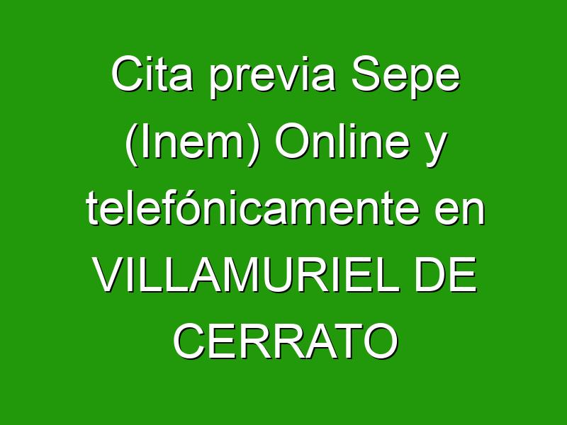 Cita previa Sepe (Inem) Online y telefónicamente en VILLAMURIEL DE CERRATO
