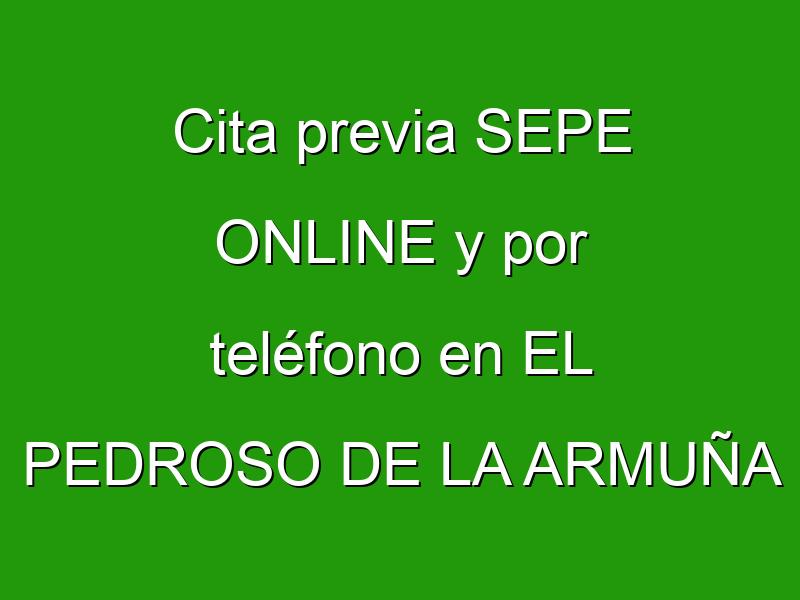 Cita previa SEPE ONLINE y por teléfono en EL PEDROSO DE LA ARMUÑA