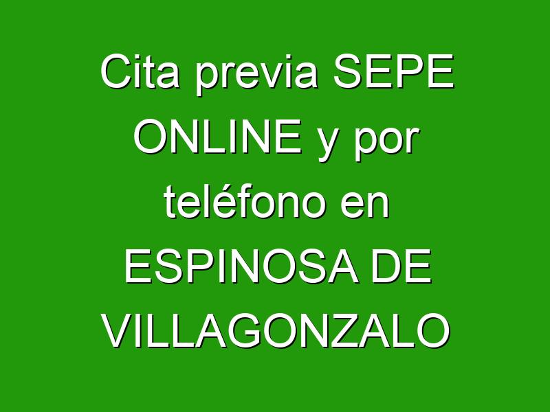 Cita previa SEPE ONLINE y por teléfono en ESPINOSA DE VILLAGONZALO