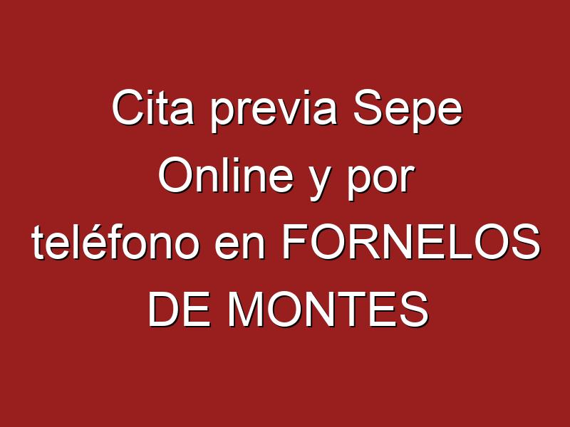 Cita previa Sepe Online y por teléfono en FORNELOS DE MONTES