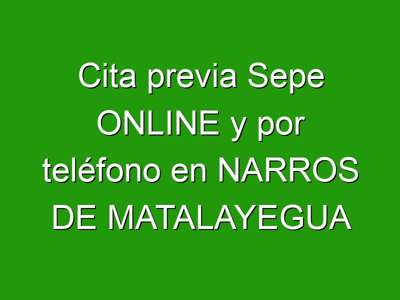 Cita previa Sepe ONLINE y por teléfono en NARROS DE MATALAYEGUA