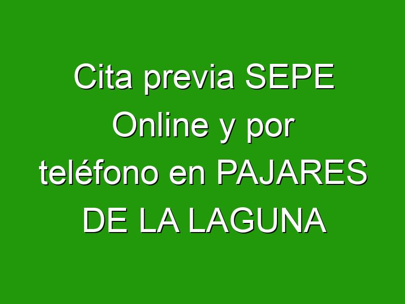 Cita previa SEPE Online y por teléfono en PAJARES DE LA LAGUNA
