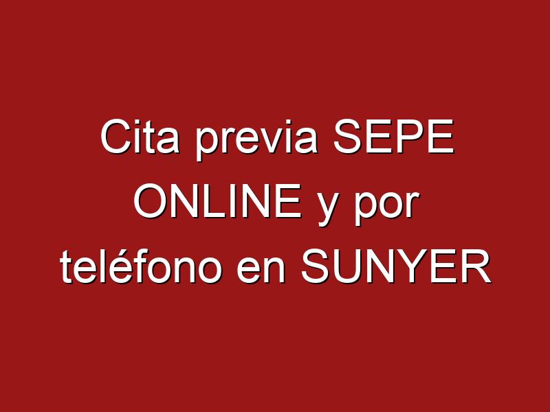Cita previa SEPE ONLINE y por teléfono en SUNYER