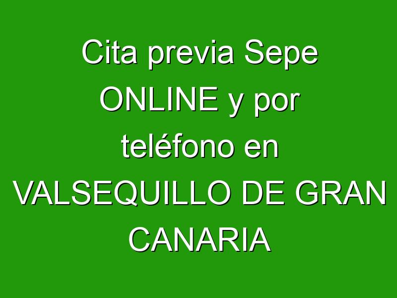 Cita previa Sepe ONLINE y por teléfono en VALSEQUILLO DE GRAN CANARIA