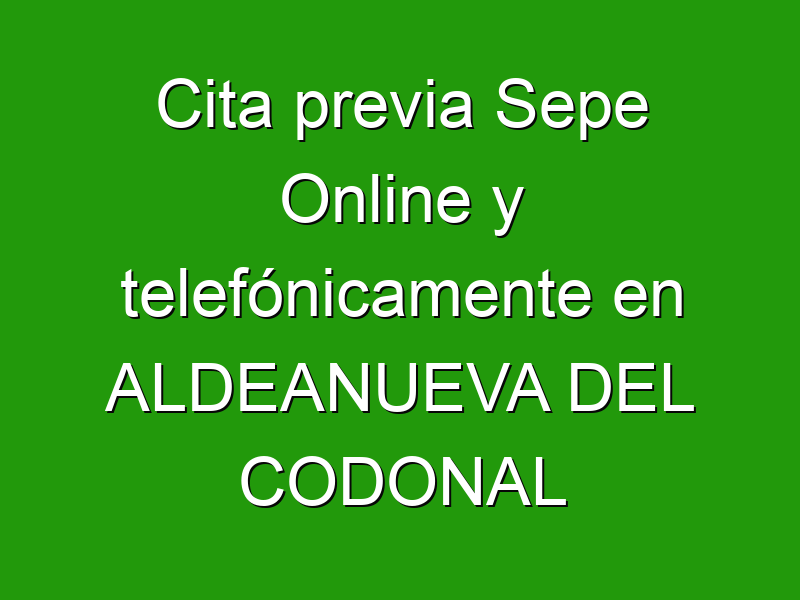 Cita previa Sepe Online y telefónicamente en ALDEANUEVA DEL CODONAL