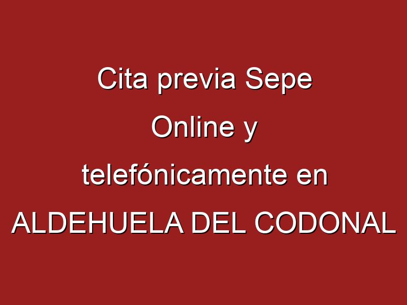 Cita previa Sepe Online y telefónicamente en ALDEHUELA DEL CODONAL