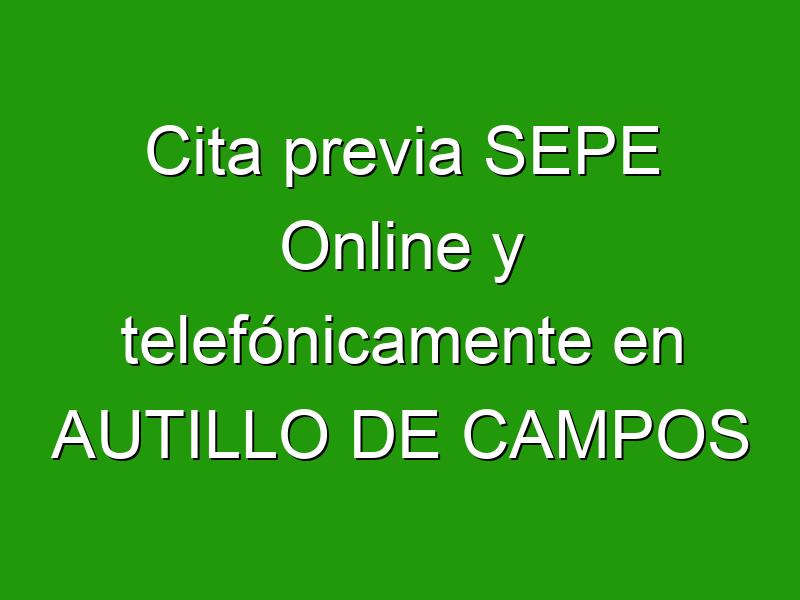 Cita previa SEPE Online y telefónicamente en AUTILLO DE CAMPOS