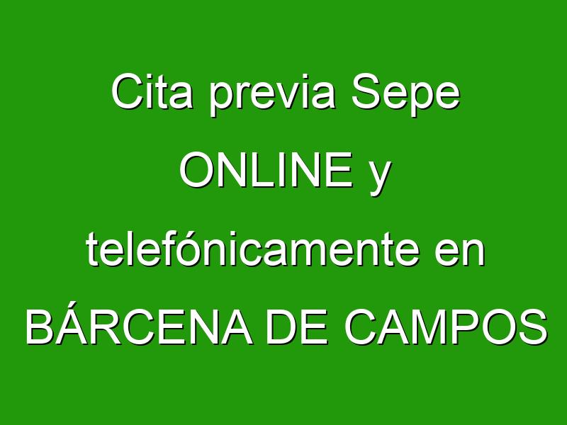 Cita previa Sepe ONLINE y telefónicamente en BÁRCENA DE CAMPOS