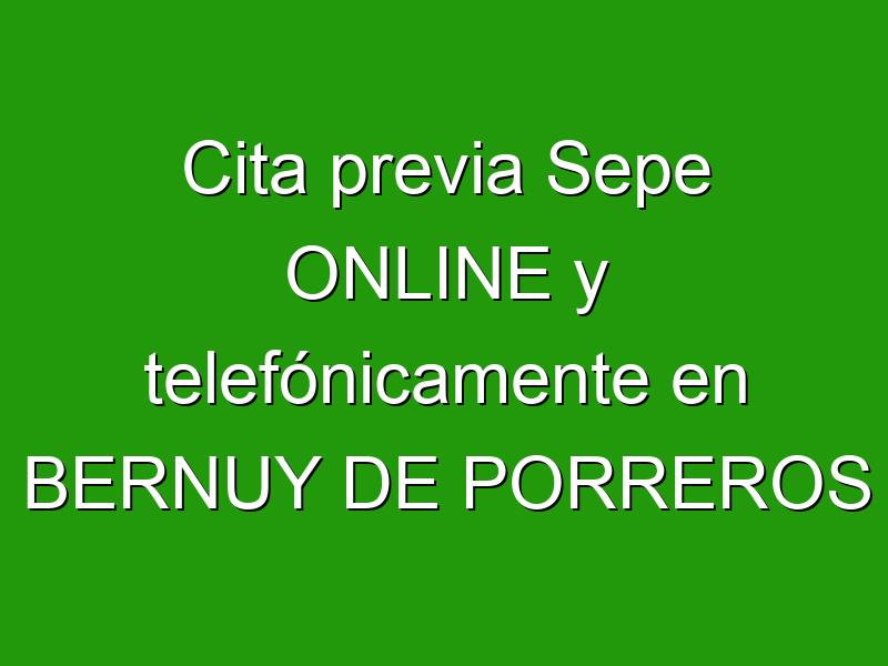 Cita previa Sepe ONLINE y telefónicamente en BERNUY DE PORREROS