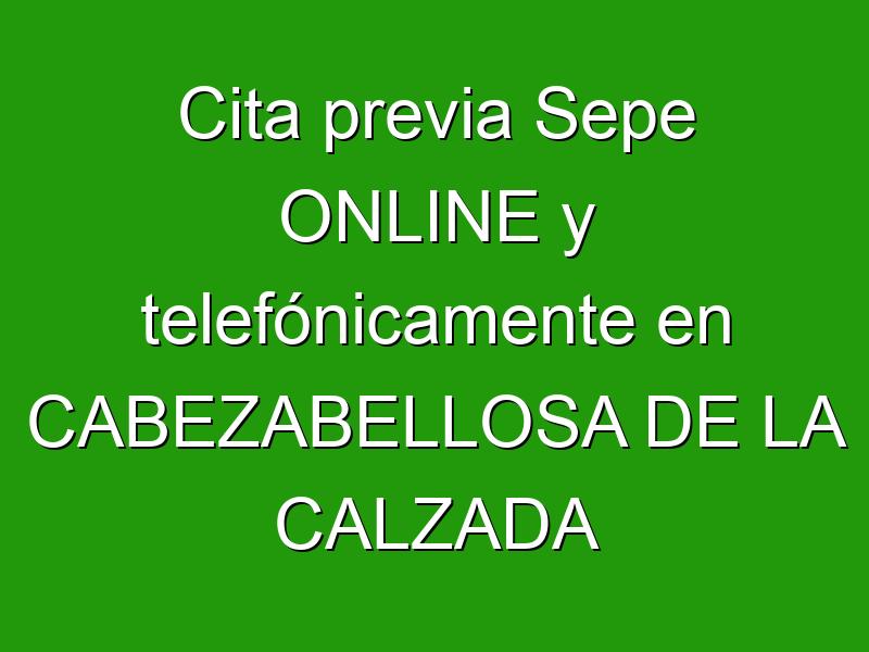 Cita previa Sepe ONLINE y telefónicamente en CABEZABELLOSA DE LA CALZADA