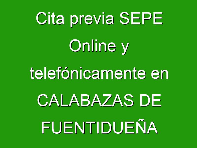 Cita previa SEPE Online y telefónicamente en CALABAZAS DE FUENTIDUEÑA