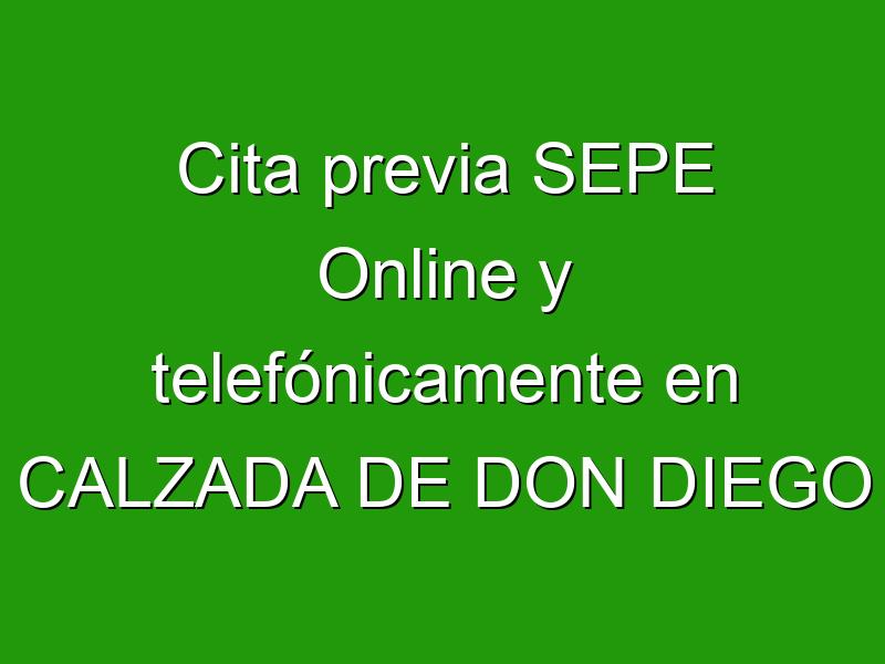 Cita previa SEPE Online y telefónicamente en CALZADA DE DON DIEGO