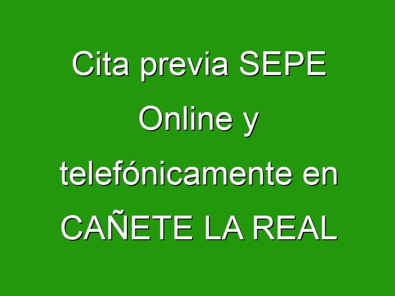 Cita previa SEPE Online y telefónicamente en CAÑETE LA REAL