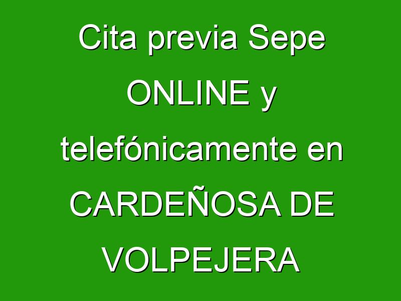 Cita previa Sepe ONLINE y telefónicamente en CARDEÑOSA DE VOLPEJERA