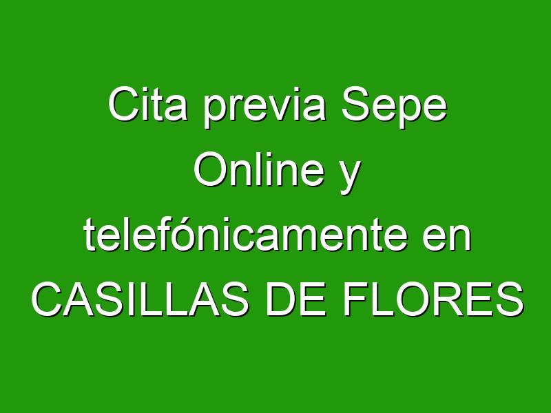 Cita previa Sepe Online y telefónicamente en CASILLAS DE FLORES