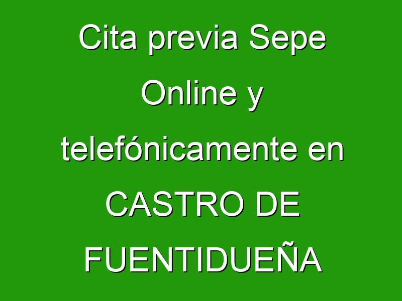 Cita previa Sepe Online y telefónicamente en CASTRO DE FUENTIDUEÑA