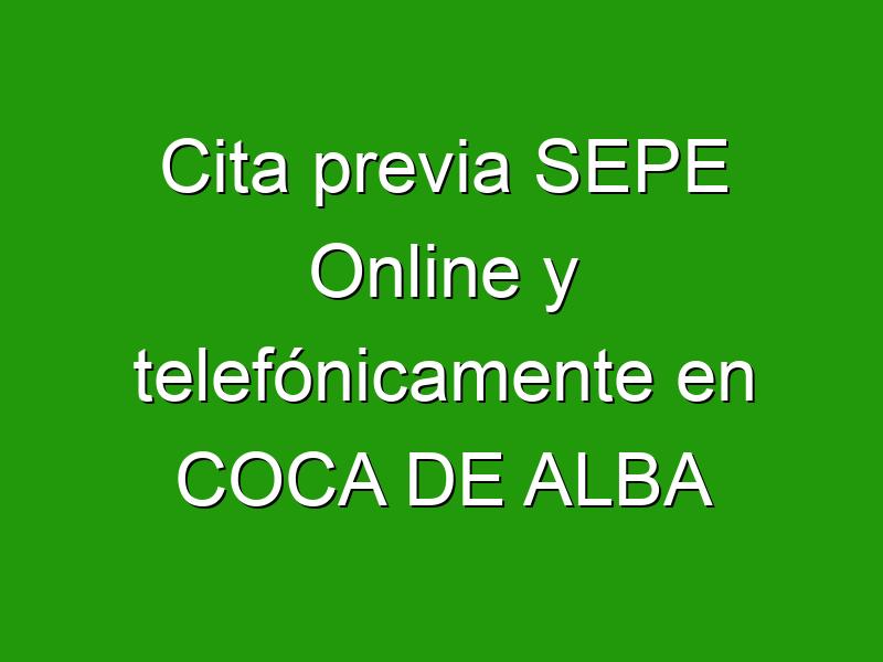 Cita previa SEPE Online y telefónicamente en COCA DE ALBA