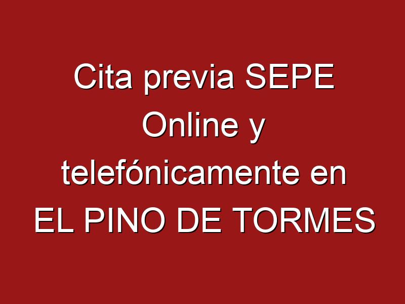 Cita previa SEPE Online y telefónicamente en EL PINO DE TORMES