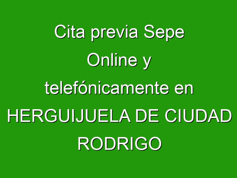 Cita previa Sepe Online y telefónicamente en HERGUIJUELA DE CIUDAD RODRIGO