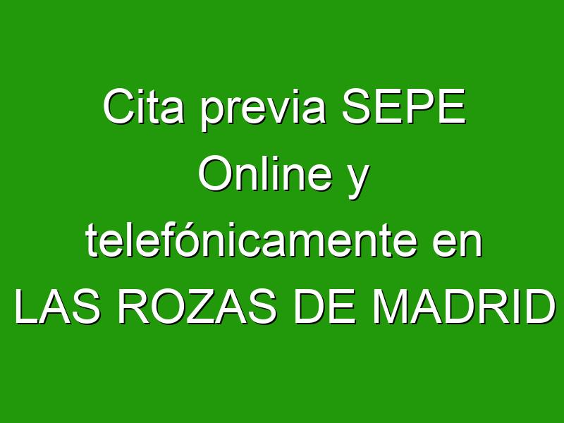 Cita previa SEPE Online y telefónicamente en LAS ROZAS DE MADRID
