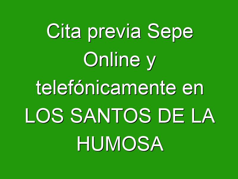 Cita previa Sepe Online y telefónicamente en LOS SANTOS DE LA HUMOSA