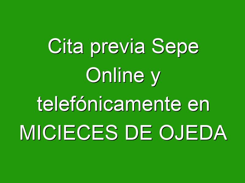 Cita previa Sepe Online y telefónicamente en MICIECES DE OJEDA