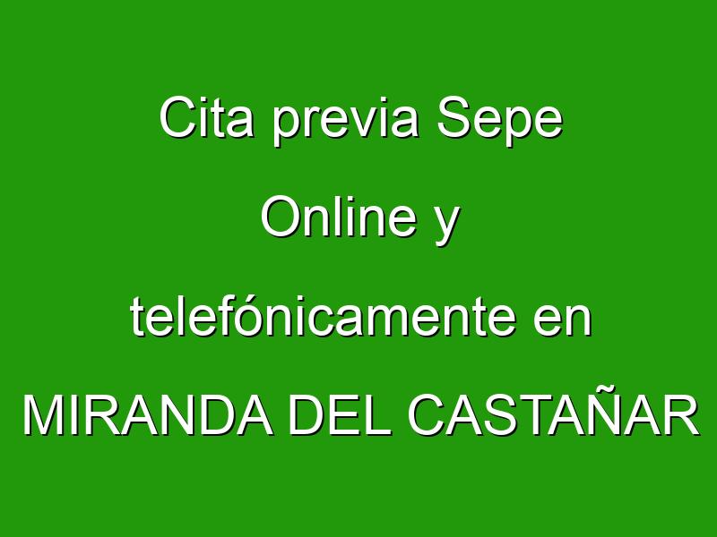 Cita previa Sepe Online y telefónicamente en MIRANDA DEL CASTAÑAR