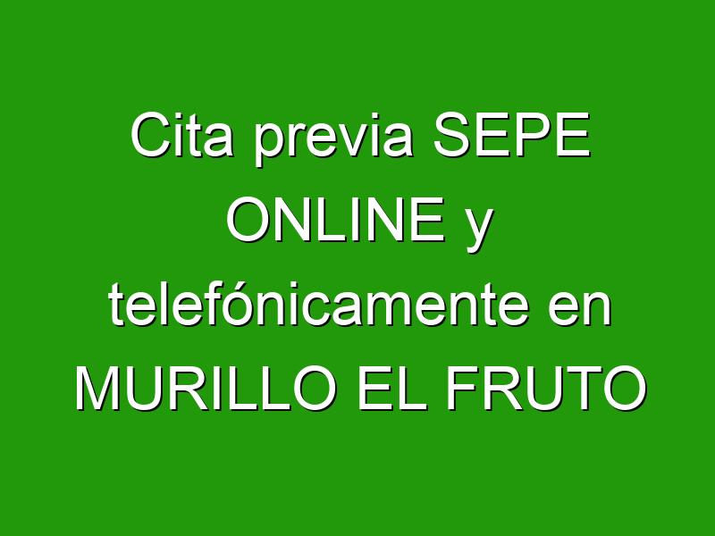 Cita previa SEPE ONLINE y telefónicamente en MURILLO EL FRUTO