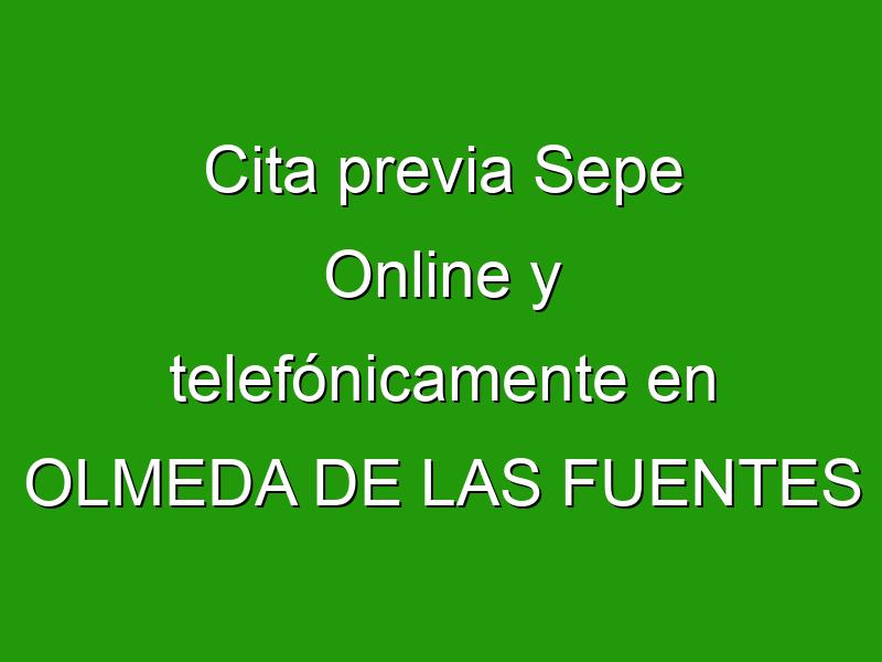 Cita previa Sepe Online y telefónicamente en OLMEDA DE LAS FUENTES