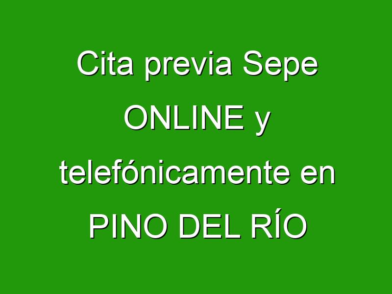 Cita previa Sepe ONLINE y telefónicamente en PINO DEL RÍO